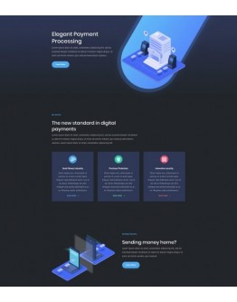 Digital Payments Landing Page